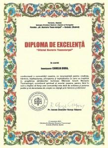 Dipploma 1 - copia