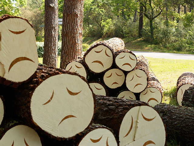 Poor-Little-Tree-Faces-2