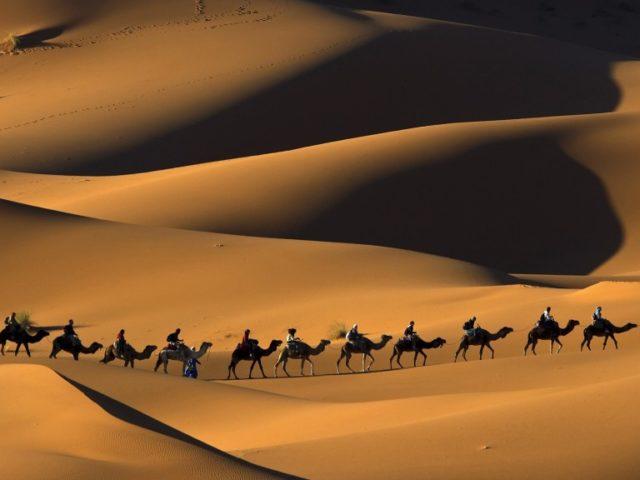 Camel-trekking-in-Erg-Chebbi