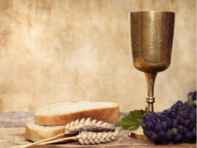 2013-05-17_135950_Painea-si-vinul