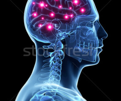 2758248_stock-photo-3d-rendered-illustration---active-brain